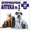 Ветеринарные аптеки в Большом Мурашкино
